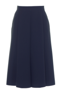 Click to see:Navy Panelled Skirt Style: 44494